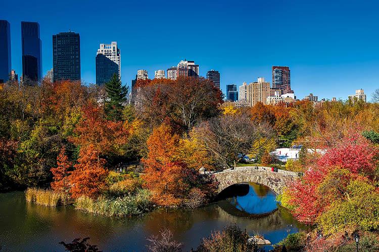 No outono, a vegetação no Central Park ganha tons de laranja e amarelo - outono em Nova York